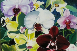 """My ORCHIDS"" SOLD"